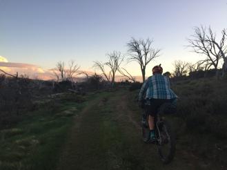 Round Mountain Track